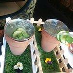 Gin cocktail in a mini-garden
