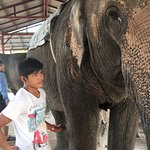 Elephant ans his care taker