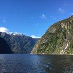 Photo of Kiwi Discovery - Milford Sound DayTrip