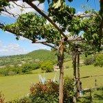 Photo de Agriturismo I Lapi