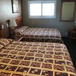 Bevonshire Lodge Motel Foto