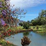 Santa Catarina Park Foto