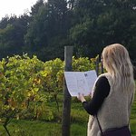 Self-guided Vineyard & Woodland Nature Trail
