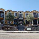 The Olive Tree Studios Photo