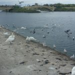 Southport Marine Lake