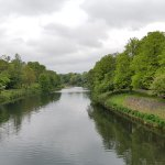 Photo of Bute Park