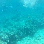 Photo of Crete Semi Submarine