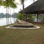 A small island on their private lake - perfect for meditation and yoga