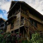 Jungle Lodge 5