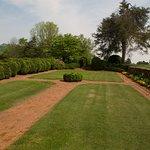 Johns Garden.