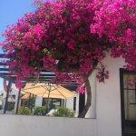 Foto de La Concha Apartments