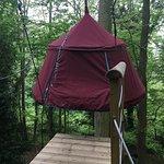 Woody Park - Tentes suspendues