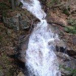 Photo of Flume Gorge