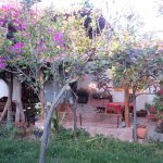Photo of Los Perales Ecolodge
