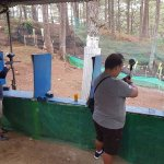 Paintball shooting