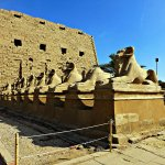 Photo of Avenue of Sphinxes
