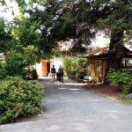 Backdoor of the garden center and into the Bonsai Garden