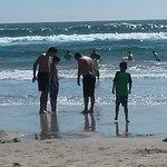 Huntington Beach State Park, CA