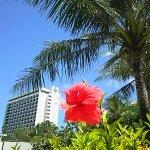 Photo of Guam Reef & Olive Spa Resort