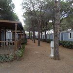 Photo of Orbetello Camping Village