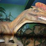 Jurassic Land Foto