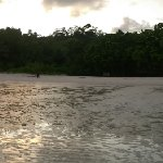 Low tide allowed this panoramic view of the hotel location which is hidden inside the trees