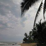 Photo of Coconut Grove Beach Resort