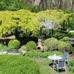 ons tuintje met terras