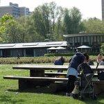 Photo of Amstelpark