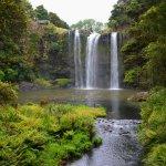 Foto de Whangarei Falls