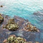 Photo of Songdo Beach