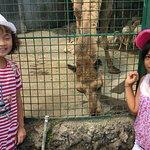 Photo de Residence Inn Tagaytay