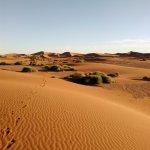 En partance pour les grandes dunes de Chegaga