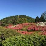 Photo of Komuroyama Park