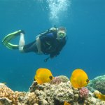 Hurghada diving center