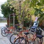 Photo of Mr. Hugo Wineries and Bikes