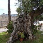 Photo of Relais Sant'Eligio
