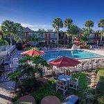 Foto de Magic Tree Resort