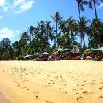 Photo de Coco Palm Beach Resort