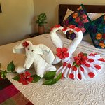 Our housekeeper was very talented with the towel folding!