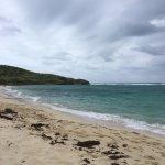 Beach at Isaccs Bay