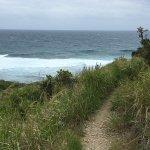 Trail to Isaacs Bay