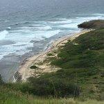 View of Isaacs Bay