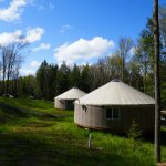 Eight yurts nicely spaced