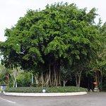 Hotel Santika Siligita Nusa Dua Foto