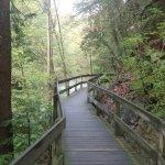 Foto de Mill Creek Park