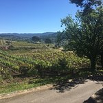 Photo de Bandol and Riviera Wine Tours