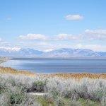 Salt Lake 2