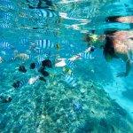 Photo of Bora Bora Lagoonarium