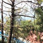 Lomas de Tzununa Foto